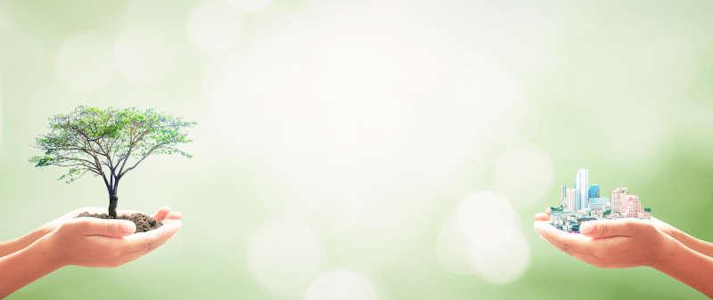 5-conseils-pour'ameliorer-la-sante-de-votre-habitat